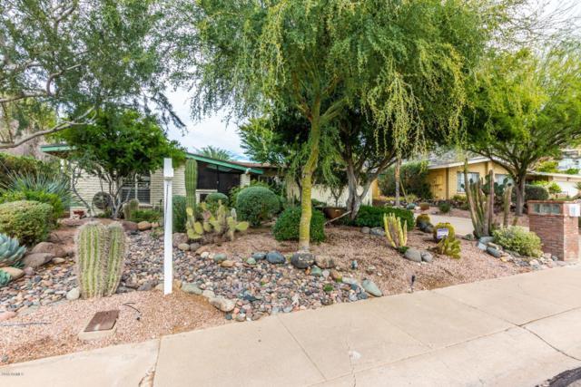 2218 E Cactus Wren Drive, Phoenix, AZ 85020 (MLS #5858112) :: CANAM Realty Group