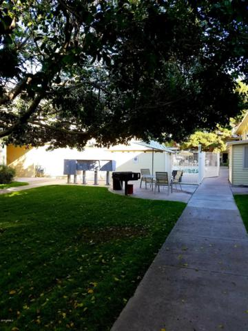 2551 W Rose Lane A 216, Phoenix, AZ 85017 (MLS #5858113) :: CANAM Realty Group