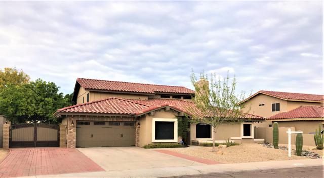 7220 W Larkspur Drive, Peoria, AZ 85381 (MLS #5858157) :: Desert Home Premier