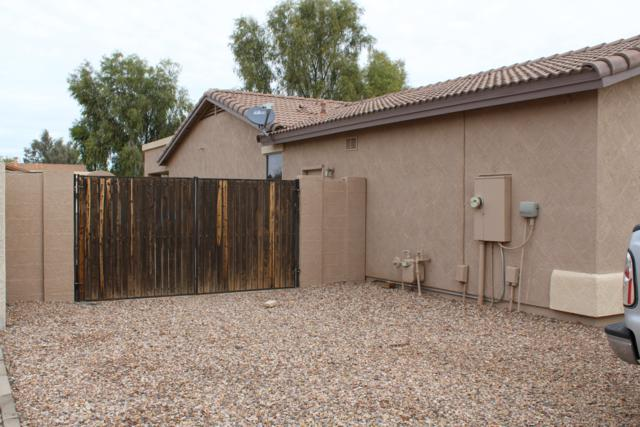 20864 E North Loop, Queen Creek, AZ 85142 (MLS #5858166) :: Brett Tanner Home Selling Team
