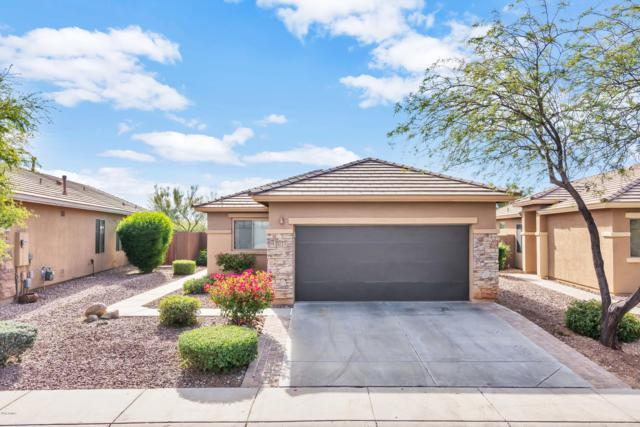 1725 W Morse Drive, Anthem, AZ 85086 (MLS #5858169) :: Brett Tanner Home Selling Team