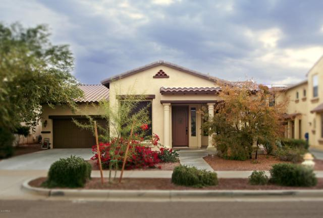 3137 N Black Rock Road, Buckeye, AZ 85396 (MLS #5858178) :: The Results Group