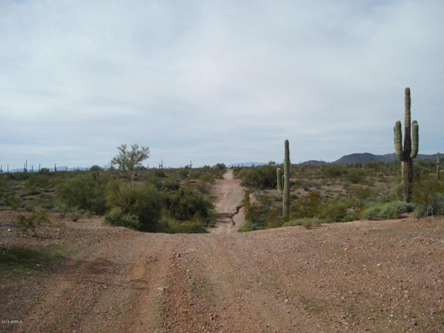 29210 W Painted Wagon Trail, Unincorporated County, AZ 85361 (MLS #5858219) :: The Daniel Montez Real Estate Group
