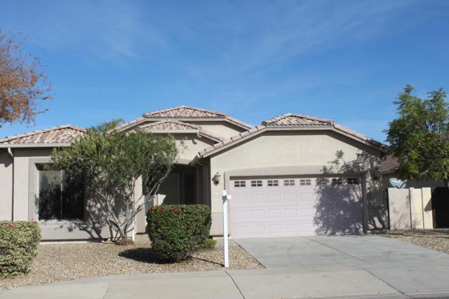 13218 W Citrus Way, Litchfield Park, AZ 85340 (MLS #5858292) :: The Luna Team
