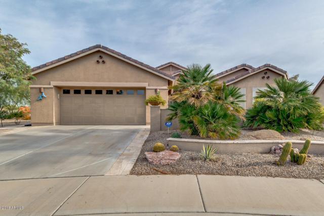 66 S Laura Lane, Casa Grande, AZ 85194 (MLS #5858294) :: Keller Williams Legacy One Realty
