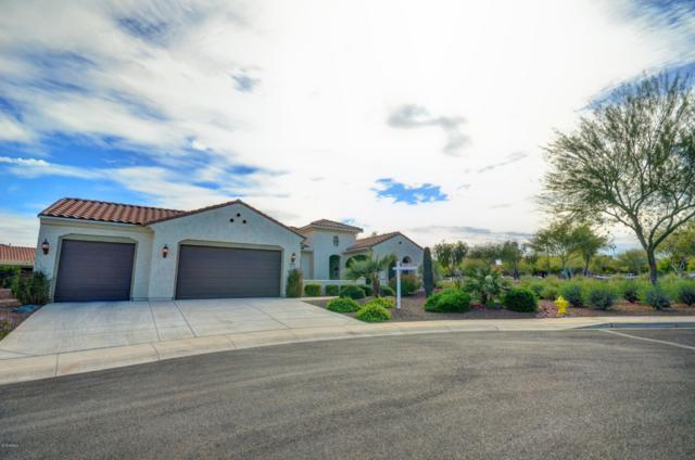 20079 N 265TH Avenue, Buckeye, AZ 85396 (MLS #5858314) :: Kepple Real Estate Group