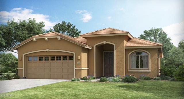 21232 W Ashland Avenue, Buckeye, AZ 85396 (MLS #5858319) :: The Luna Team