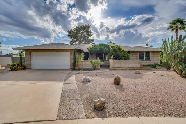 3331 S Kenwood Lane, Tempe, AZ 85282 (MLS #5858321) :: Occasio Realty
