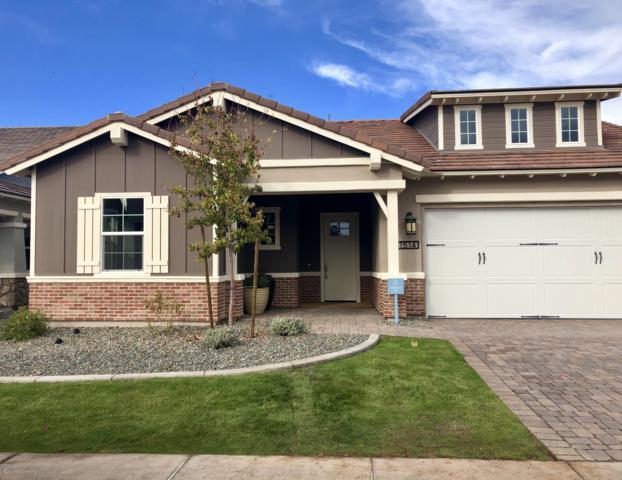 1514 W Gardenia Avenue, Phoenix, AZ 85021 (MLS #5858343) :: Scott Gaertner Group