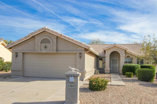 25043 S Saddletree Drive, Sun Lakes, AZ 85248 (MLS #5858382) :: The Pete Dijkstra Team