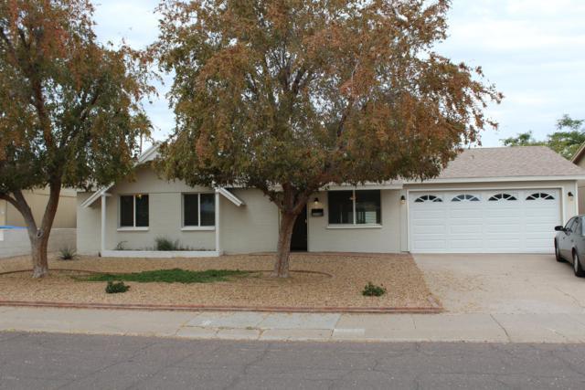 3710 E Ludlow Drive, Phoenix, AZ 85032 (MLS #5858384) :: Conway Real Estate