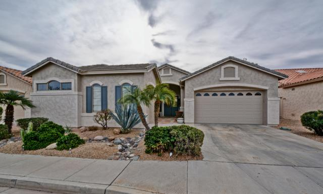 17833 W Spencer Drive, Surprise, AZ 85374 (MLS #5858393) :: The W Group