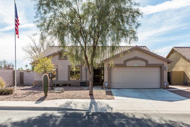 11361 E Escondido Avenue, Mesa, AZ 85208 (MLS #5858402) :: Conway Real Estate