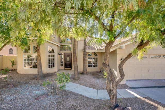 1421 E Amberwood Drive, Phoenix, AZ 85048 (MLS #5858416) :: The W Group