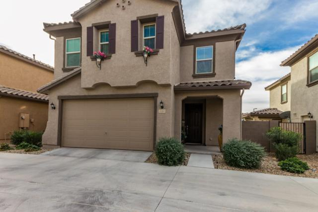 1163 N 164TH Avenue, Goodyear, AZ 85338 (MLS #5858442) :: The Luna Team