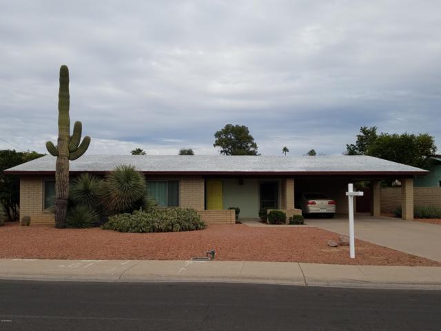 340 E Geneva Drive, Tempe, AZ 85282 (MLS #5858450) :: Occasio Realty
