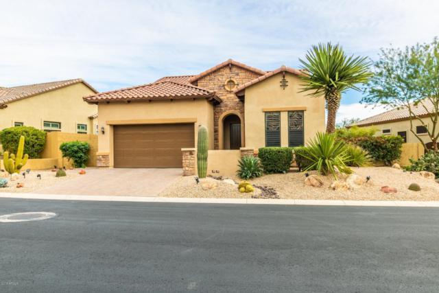 1641 N Channing, Mesa, AZ 85207 (MLS #5858469) :: Conway Real Estate