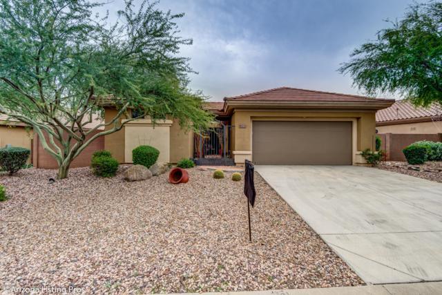41231 N Prestancia Drive, Anthem, AZ 85086 (MLS #5858473) :: Brett Tanner Home Selling Team