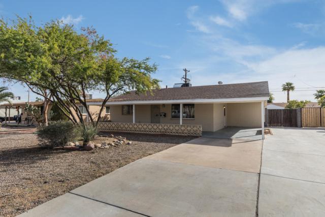 11221 W Connecticut Avenue, Youngtown, AZ 85363 (MLS #5858477) :: Brett Tanner Home Selling Team
