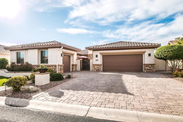 15755 W Edgemont Avenue, Goodyear, AZ 85395 (MLS #5858489) :: The Luna Team