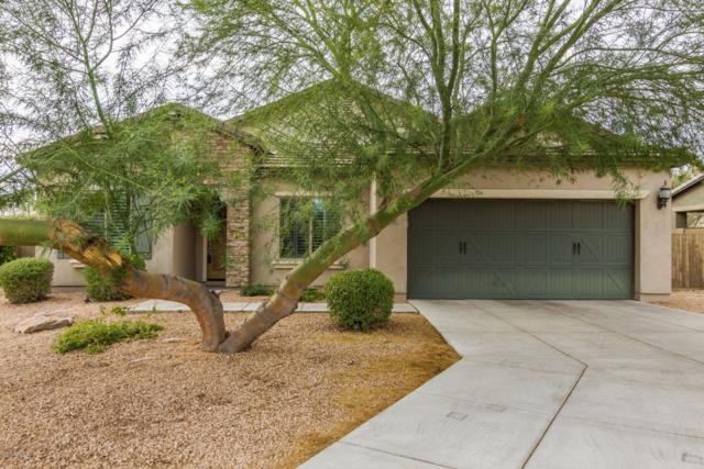 21110 N 37TH Run, Phoenix, AZ 85050 (MLS #5858497) :: Occasio Realty