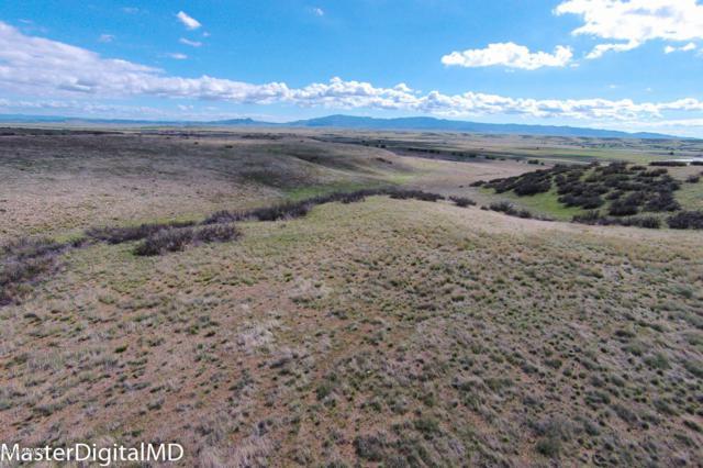 7000 E Ruger Road, Prescott, AZ 86301 (MLS #5858502) :: Conway Real Estate