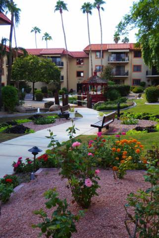 10330 W Thunderbird Boulevard W C308, Sun City, AZ 85351 (MLS #5858532) :: Occasio Realty