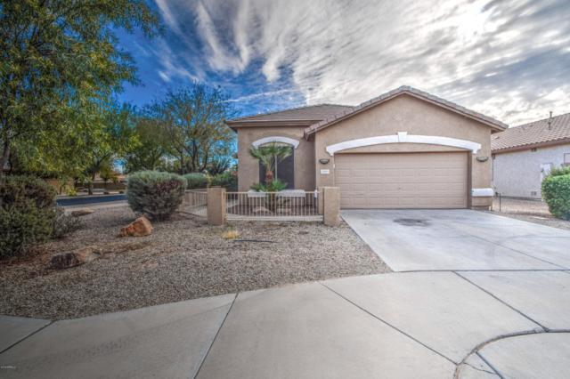 20881 E Via Del Palo, Queen Creek, AZ 85142 (MLS #5858533) :: Keller Williams Legacy One Realty