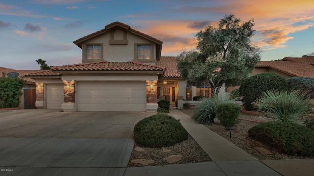 1671 W Carla Vista Drive, Chandler, AZ 85224 (MLS #5858537) :: Occasio Realty