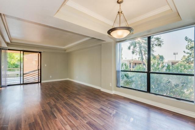 3420 W Danbury Drive C218, Phoenix, AZ 85053 (MLS #5858559) :: Team Wilson Real Estate