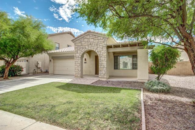 979 E Blue Spruce Lane, Gilbert, AZ 85298 (MLS #5858561) :: Conway Real Estate