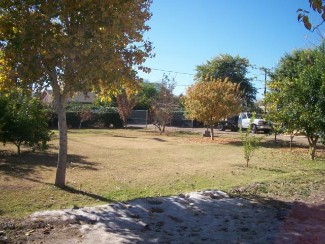 6604 S 9TH Street, Phoenix, AZ 85042 (MLS #5858569) :: Kortright Group - West USA Realty