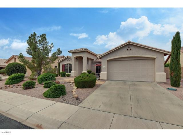 17412 N Goldwater Drive, Surprise, AZ 85374 (MLS #5858587) :: Keller Williams Legacy One Realty