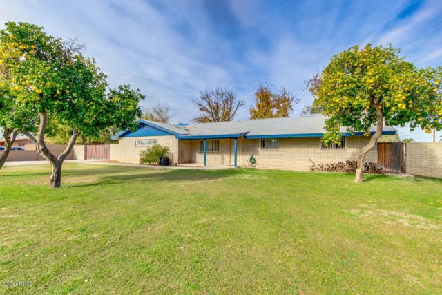 2534 W Gregg Drive, Chandler, AZ 85224 (MLS #5858588) :: Occasio Realty