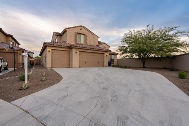 25525 N 105th Drive, Peoria, AZ 85383 (MLS #5858631) :: Conway Real Estate