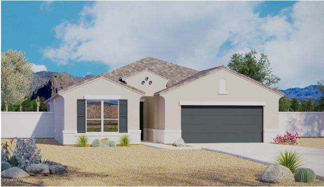26032 N 138TH Lane, Peoria, AZ 85383 (MLS #5858634) :: Occasio Realty