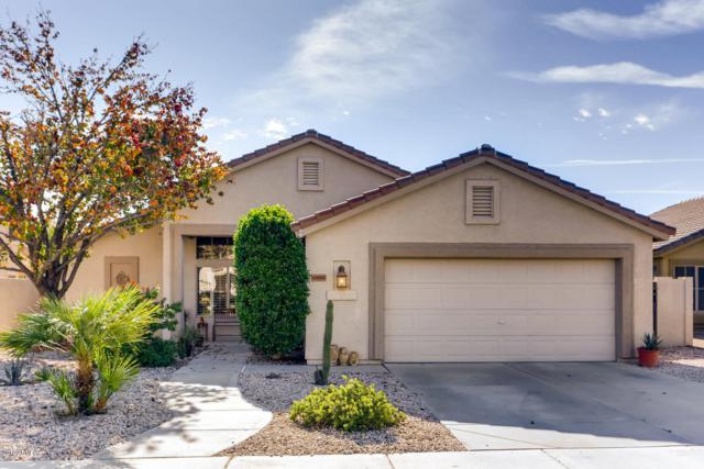 7459 W Mohawk Lane, Glendale, AZ 85308 (MLS #5858645) :: The Luna Team