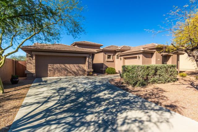 4244 S Lysiloma Lane, Gold Canyon, AZ 85118 (MLS #5858685) :: Power Realty Group Model Home Center