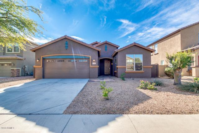 15385 W Mackenzie Drive W, Goodyear, AZ 85395 (MLS #5858690) :: Occasio Realty