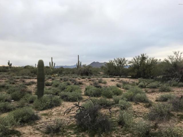 6739 E Milton Drive, Cave Creek, AZ 85331 (MLS #5858700) :: Santizo Realty Group