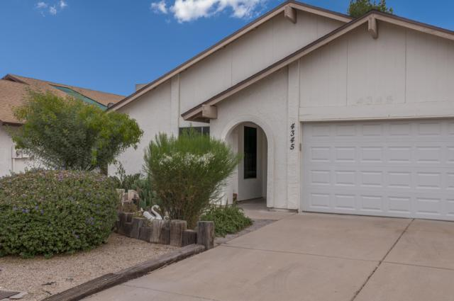 4345 W Morrow Drive, Glendale, AZ 85308 (MLS #5858704) :: The Luna Team
