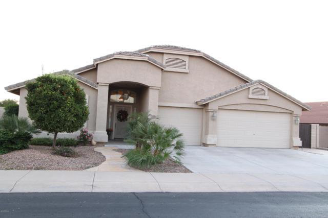 795 E Canyon Way, Chandler, AZ 85249 (MLS #5858715) :: The Luna Team
