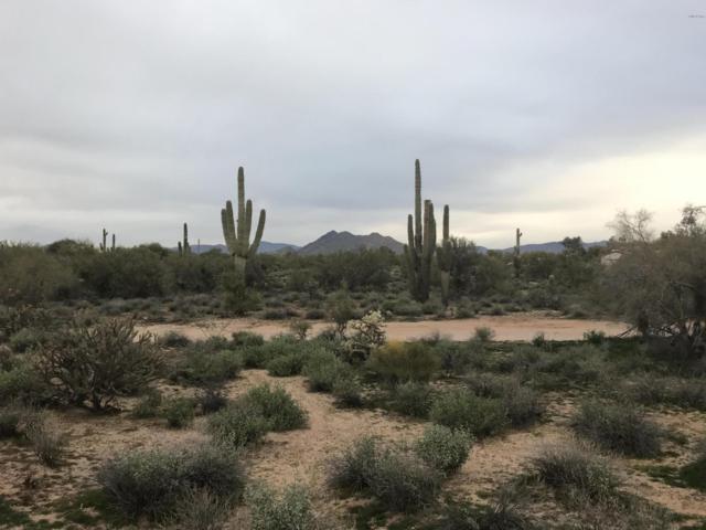 6731 E Milton Drive, Cave Creek, AZ 85331 (MLS #5858732) :: Occasio Realty