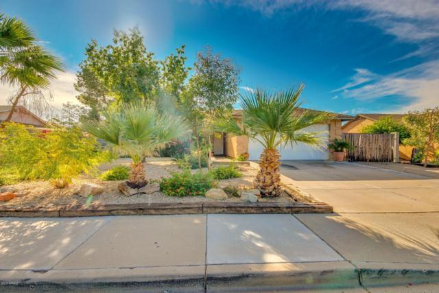 8909 W Butler Drive, Peoria, AZ 85345 (MLS #5858763) :: Conway Real Estate