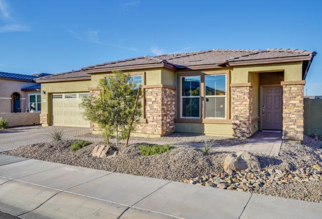 18110 W Cedarwood Lane, Goodyear, AZ 85338 (MLS #5858768) :: RE/MAX Excalibur