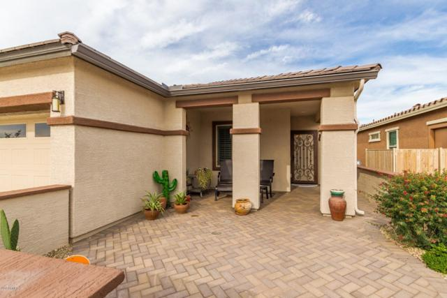 17862 W Silver Fox Way, Goodyear, AZ 85338 (MLS #5858775) :: The Everest Team at My Home Group