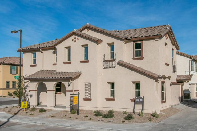16486 W La Ventilla Way, Goodyear, AZ 85338 (MLS #5858823) :: The Everest Team at My Home Group
