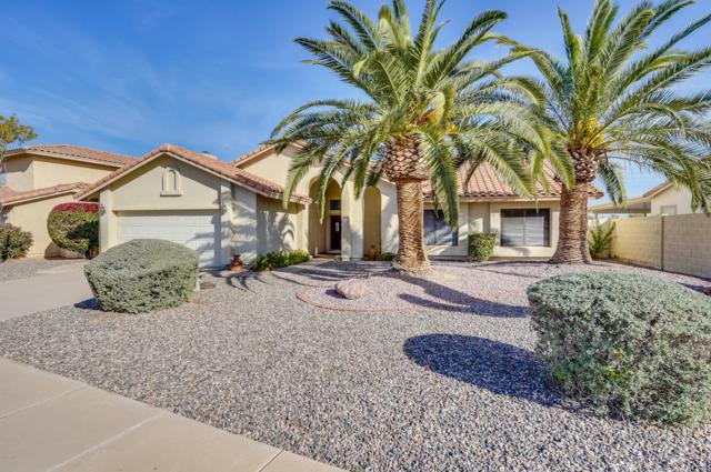 10944 W Clover Way, Avondale, AZ 85392 (MLS #5858878) :: The Results Group
