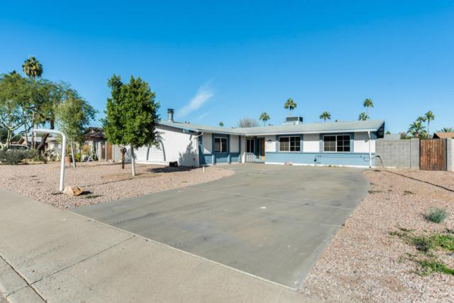 1910 E Watson Drive, Tempe, AZ 85283 (MLS #5858899) :: Occasio Realty