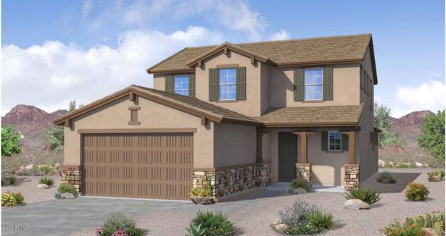 10066 W Cashman Drive, Peoria, AZ 85383 (MLS #5858963) :: CC & Co. Real Estate Team